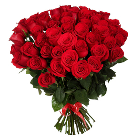 51 Red Roses Bouquet and Teddy