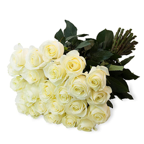 Bouquet Of 21 White Roses