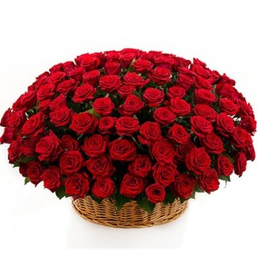 151 Red Roses in Basket