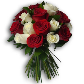 15 red and white roses
