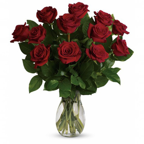 9 Red Roses in a Vase