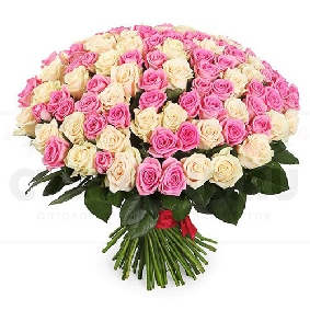 101 Pink & White Roses Bouquet