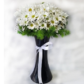 Vase White Chrysanthemum