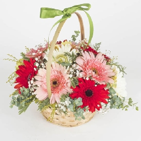 Gerberas in Basket